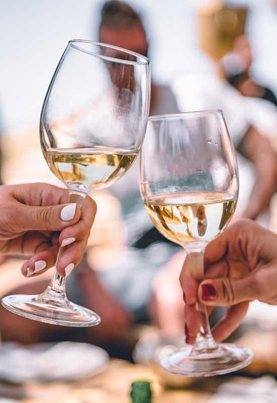 El secret de la qualitat dels vins DO Terra Alta